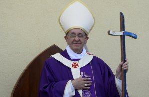 Bergoflio férula piscatória